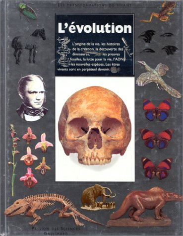 L'Evolution Linda Gamlin ; photogr