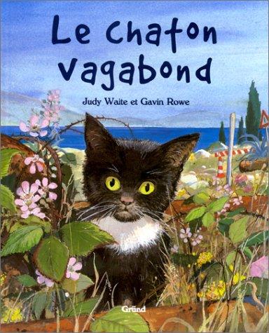 Le chaton vagabond