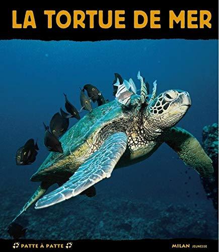 tortue de mer (La)