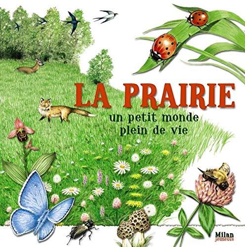 La prairie, un petit monde plein de vie