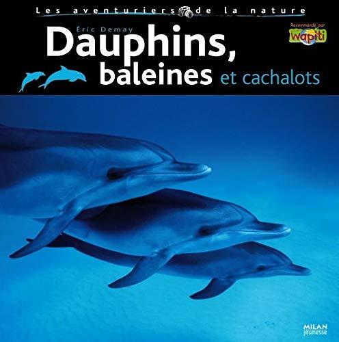 Dauphins - baleines