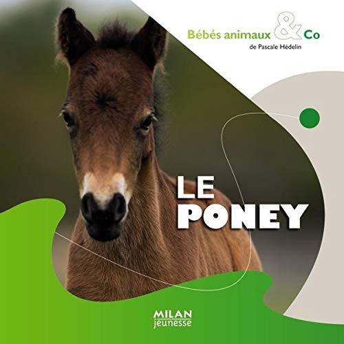 Poney (Le)